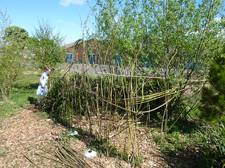 willow dome-inspired den making at Kilbarchan Primary School garden