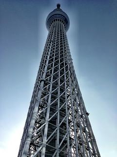 Skytree   by Dal Lu