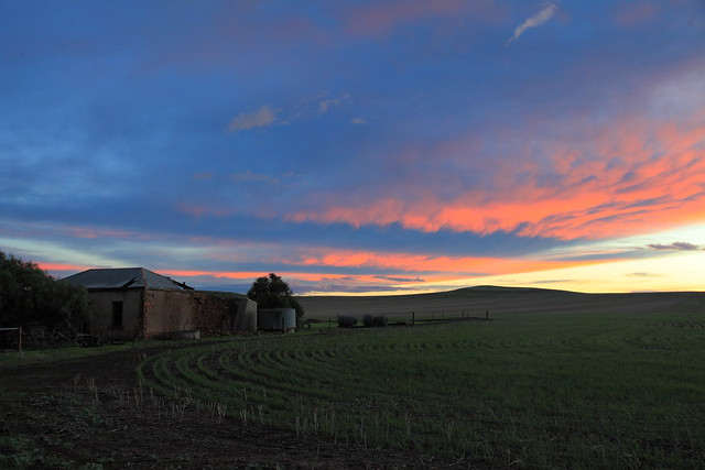 Mid North Sunset