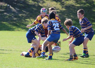 IMG_5419 | by Takapuna Rugby