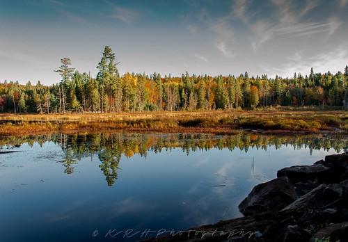 Beaver Pond | by kevinhaw335
