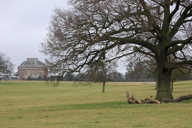 Ickworth Park (NT) 10-03-2012