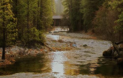 california trees nature forest rocks stream coveredbridge yosemitenationalpark mercedriver wawonahotel