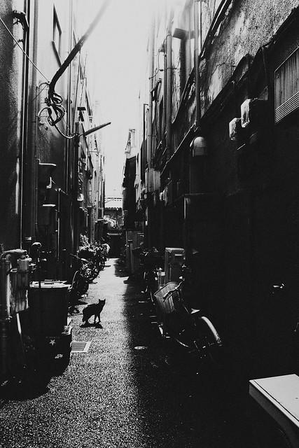 Asakusa,Tokyo
