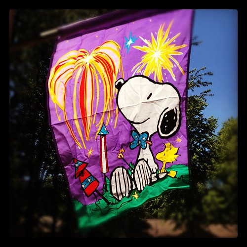 Got new masonry anchors to rehang the flag on the front of the house. Snoopy fireworks!