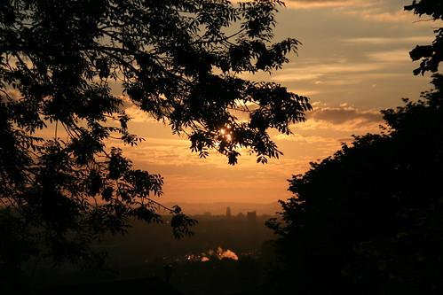 morning tree sunrise canon photography photo flickr mark sigma somerset amateur beginner yeovil whitmarsh amateurphotography canoneos400ddigital sigmazoomlens canoneosdigital400d sigma18200mmf3563dcos yeovilcountrypark whitmarshphotograpy walkmorningwalk markwhitmarsh marmarwhit markwhitmarshphotography