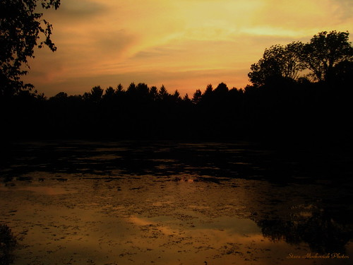 trees lake water clouds canon reflections evening cloudy silhouettes powershot a510 paintedsky melodylake smack53