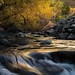 Andrew Deitrick- Boulder Creek
