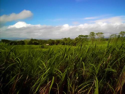 philippines iphotooriginal