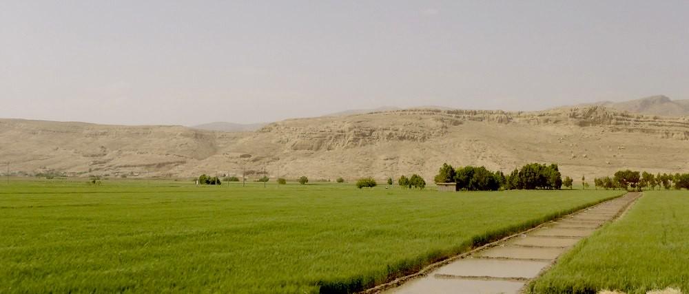yazd-shiraz-L1030154