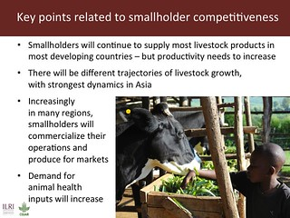 Slide 8: Key points related to smallholder competitiveness | by International Livestock Research Institute