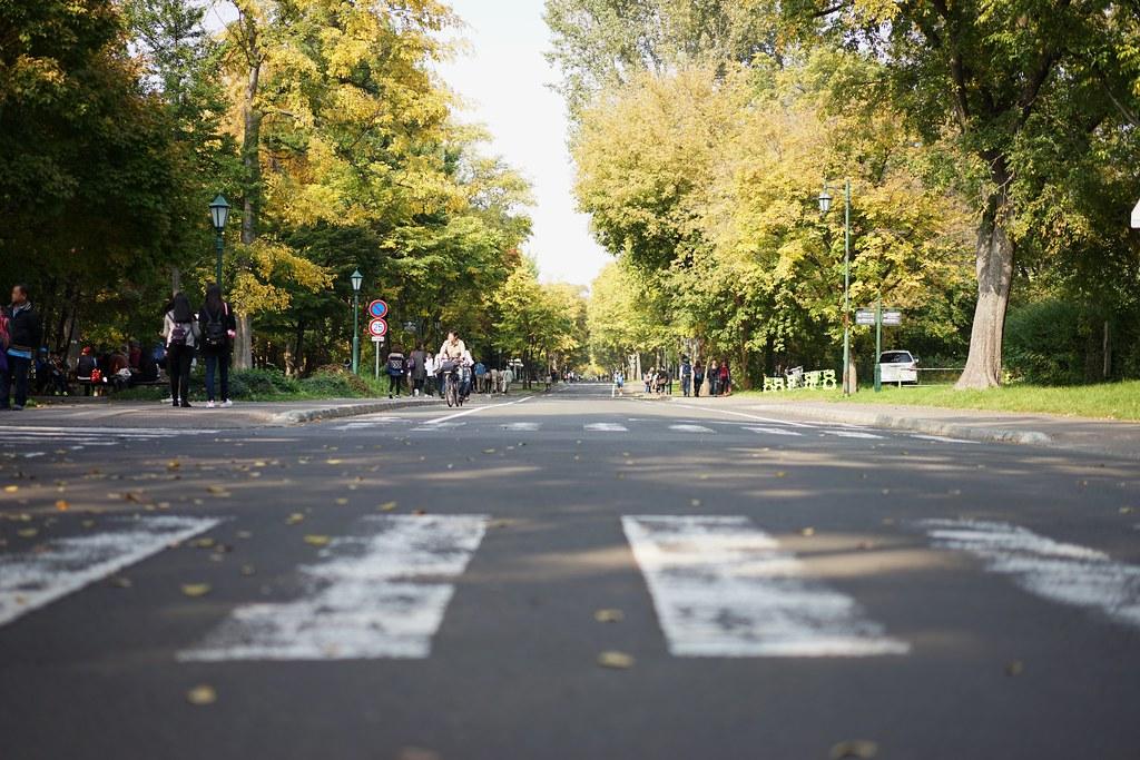 北海道大学6