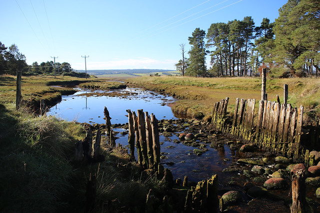 Culmaily Burn, Loch Fleet