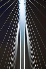 Prince Claus bridge 2