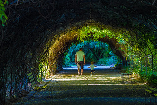 Botanic Gardens 045 (Father & Son) | by Alastair Farr