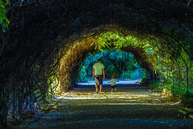 Botanic Gardens 045 (Father & Son)