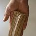 Hands of the Apprenticeship Program