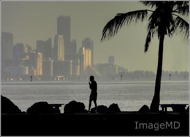 Sunrise Walker