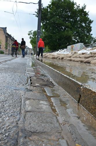 9024472844 3d6f32df36 Elbehochwasser   Juni 2013