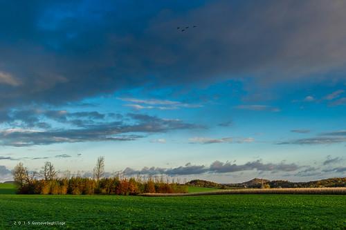 blue autumn sky clouds automne landscape europa europe belgique cloudy bleu ciel nuages paysage saisons wallonie nuageux terril borinage quévy nikkor2470mmf28 nikond3s