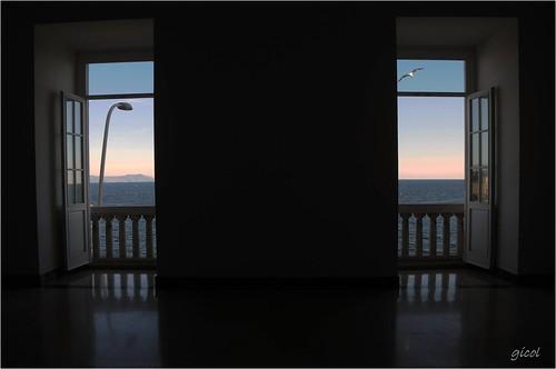 camera sea italy window island ventana capri flying italia mare campania waterfront view room seagull finestra promenade vista napoli naples seafront lungomare isla gaviota gabbiano fenetre isola stanza balcone habitacion volando passeggiata partenope