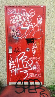 Red Door in Carrboro | by BrianR