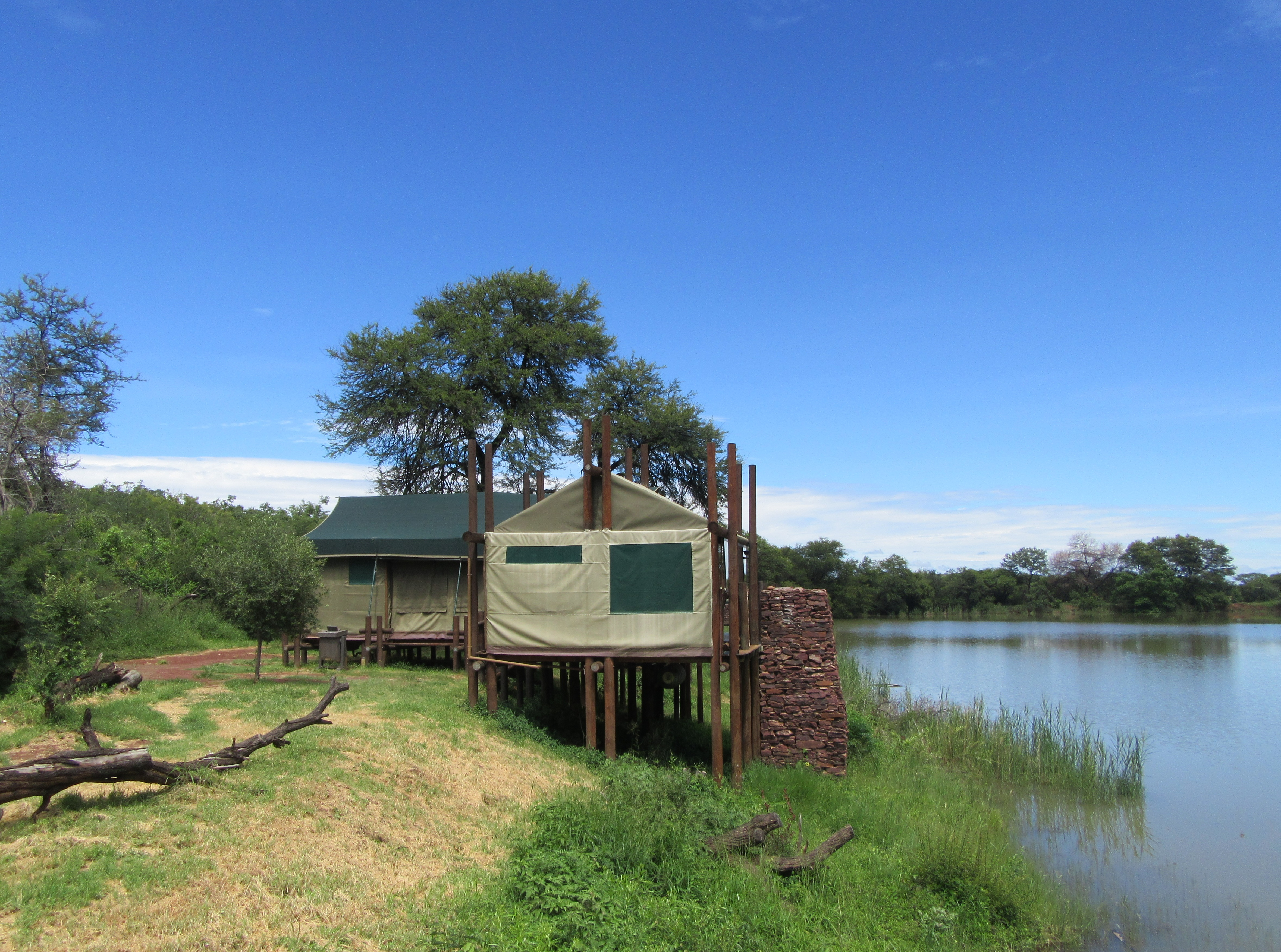 Safari Tent Tlopi Tented Camp Marakele South Africa