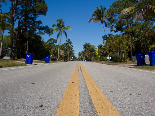 street vanishingpoint florida bin palmtree naples gabage