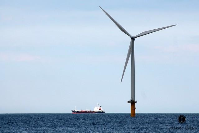 IMG_6260 Teesside offshore Windfarm CEW