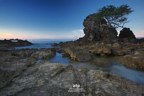 blue sea tree water indonesia rocks nopeople boulders lombok waterflows aftersunrise westnusatenggara nusatenggarabarat alitrisnopranoto