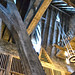 Covered Catwalk and Roof Underside at Three Broomsticks