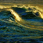 DSC_0131 Golden waves