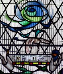 barn owl: 'God heals' (detail, Emma Blount, 2011)