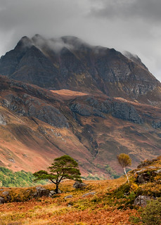 Slioch and trees