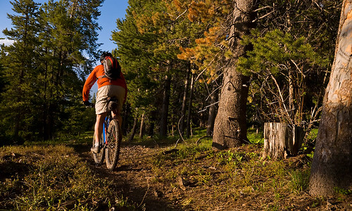 Single-track trails are everywhere.