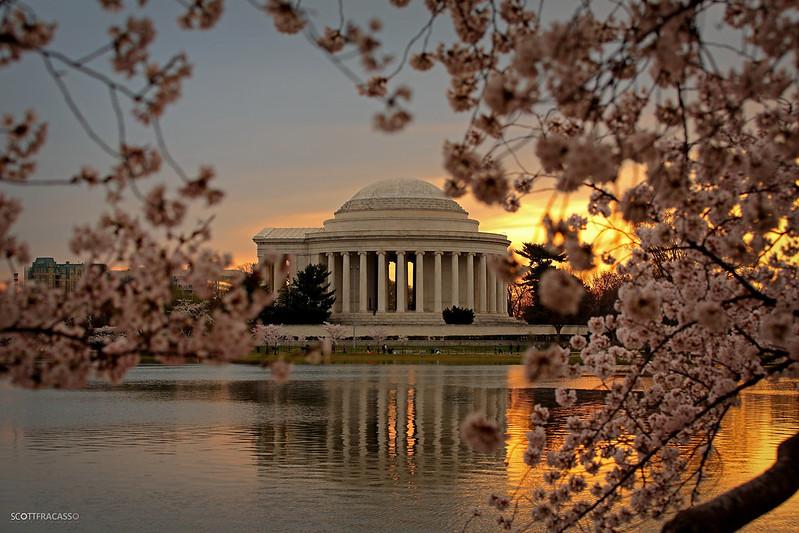 AS3A6971-2-sig Cherry Blossom Sunrise