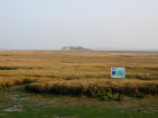 North Binness Island from Farlington Marshes