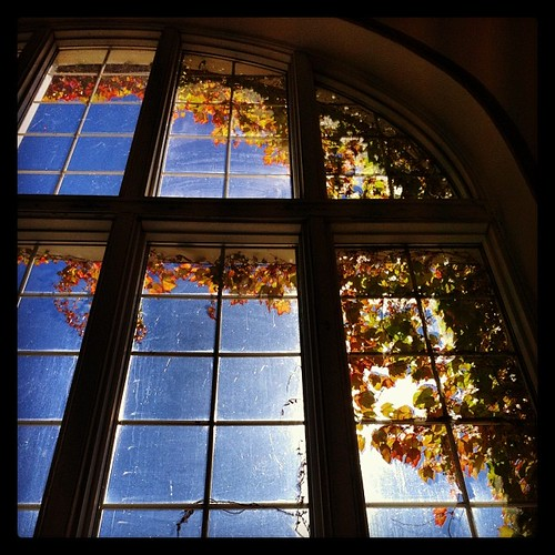 autumn windows fall architecture campus dartmouth alumnigym iphoneography karlmichaelpool instagram instagramapp
