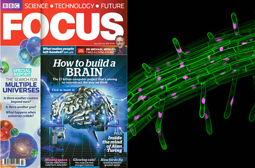 Our image in Focus BBC magazine | by Fernan Federici