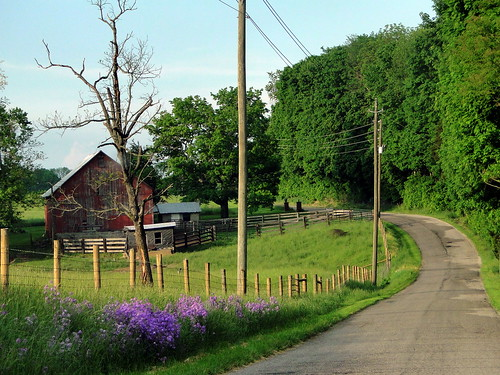 Southern Indiana Rural Life   by cindy47452