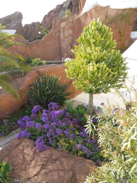 Jardines Lagomar Lanzarote 31