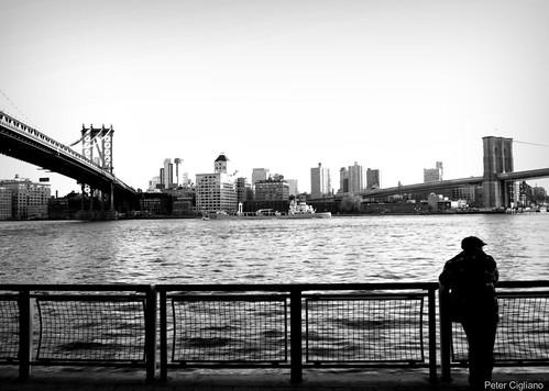 Manhattan and Brooklyn Bridges