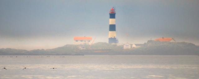 race rocks lighthouse emerging from the fog . . .