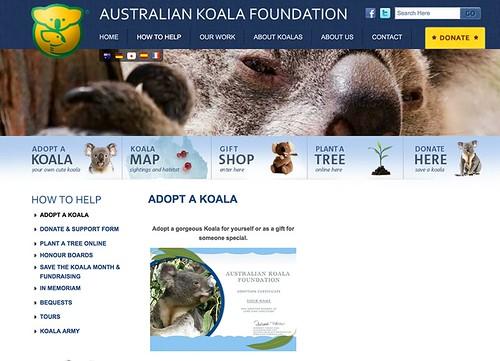 Koala Foundation. | by abarbuc