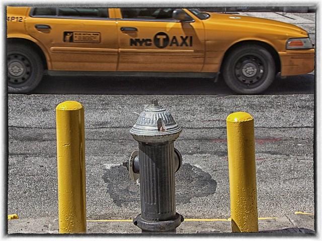 ICONOS NYC