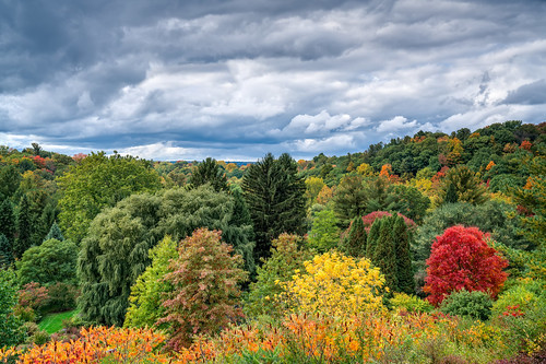colors sony2470mmf28g cny landscape season nature newyork fall ny trees centralnewyork tompkinscounty forest scenic sonya7r2 outdoors traveldestination beautyinnature hiking ithaca cornelluniversity college school sky clouds storm