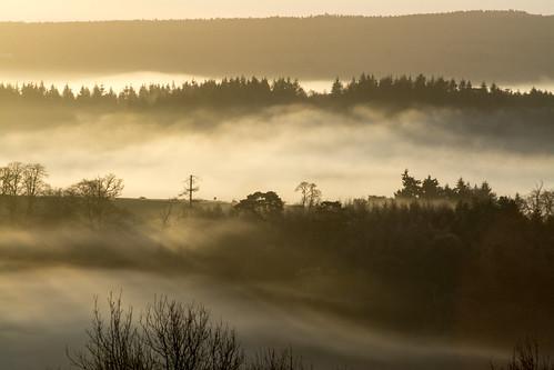 misty sunrise morning early surrey newlandscorner landscape