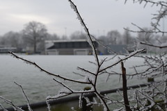 winter-2017-19