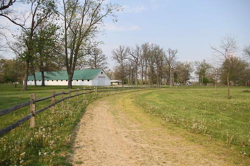ohio horseracing plaincity pastimepark