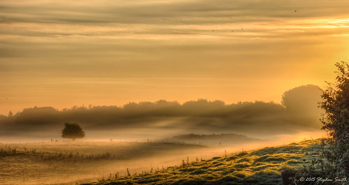 2015 october autumn geddington newton northamptonshire eastmidlands england english sunrise sunlight earlymorning landscape countryside d7200 hdr mist misty cloudscape tree rural nature natural fields woods hedgerows colour warm gold tranquil peaceful